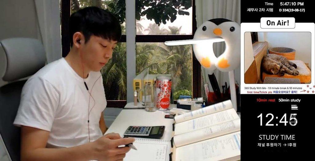 studytubers