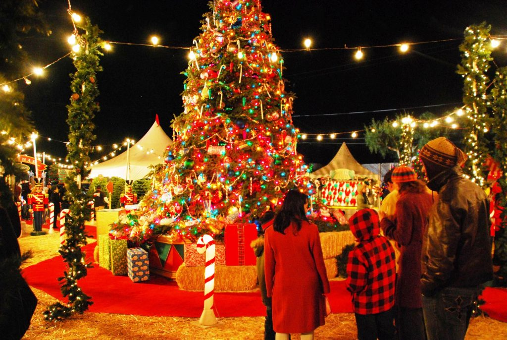 Christmas Day - Top Things You Can Do In Delhi! - Little Letters Linked