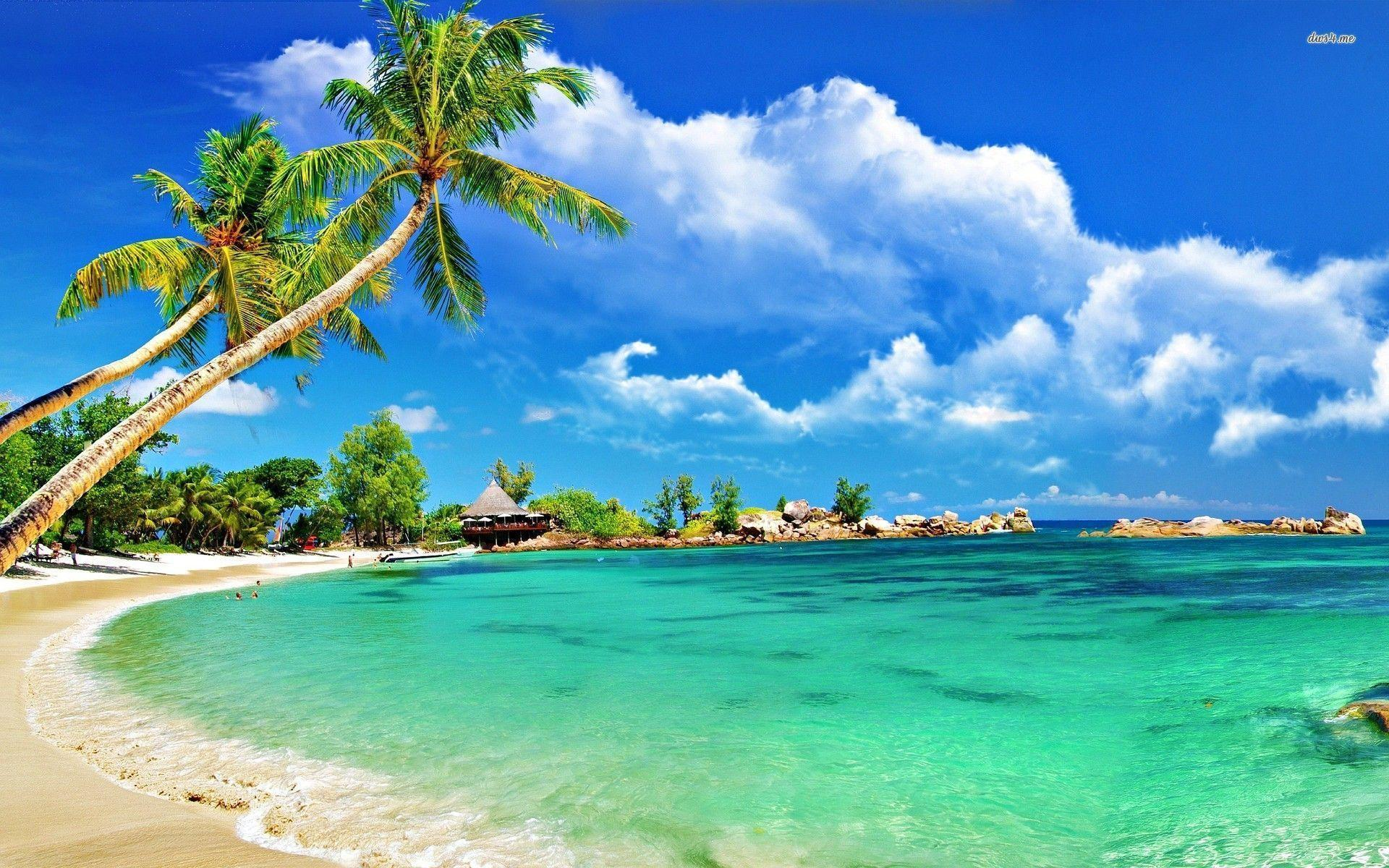 Best Beaches Around The World - Little Letters Linked