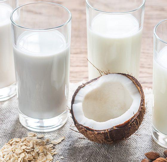 Plant based milk options