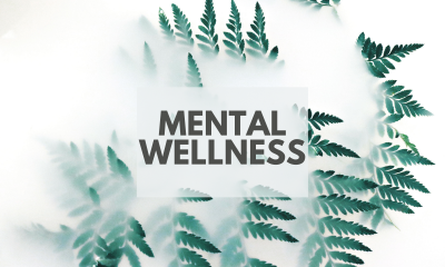 Mental Wellness Guide